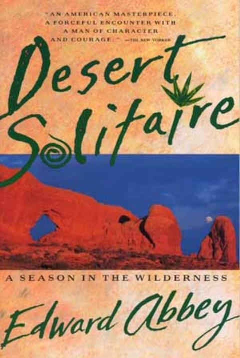 Deserto solitario