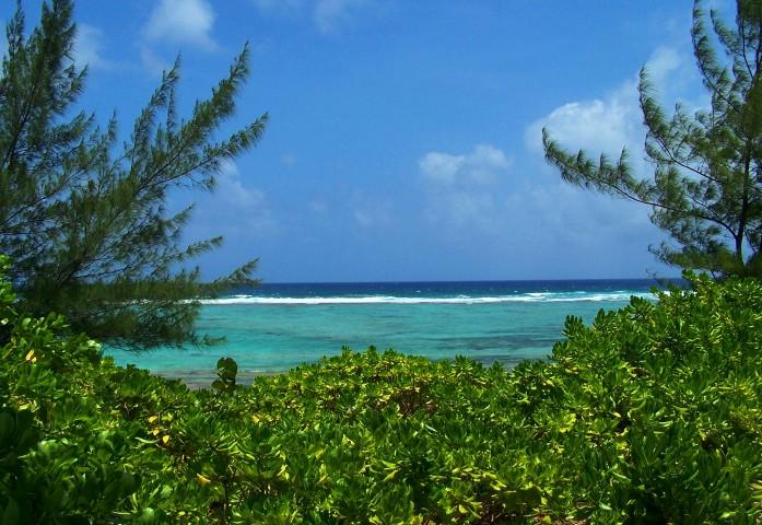 Caribbean (1)