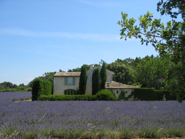 France-road (5)