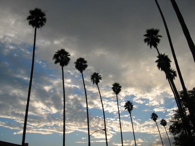Los Angeles (2)