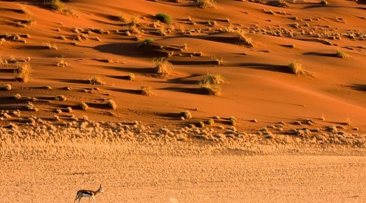 The Complete Guide to Namibia
